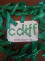 CdiffForRelease-1